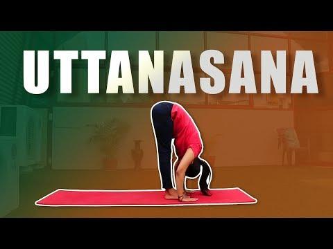 Uttanasana   Yoga Posture   Standing Forward Bend Pose