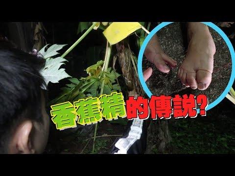 《真相大白 第三集 》召唤香蕉精,看看能不能看到韩晓爱!