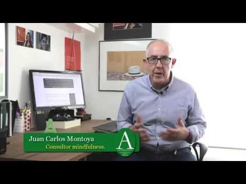 cómo-aprender-a-practicar-mindfulness-o-atención-plena-con-plenacción