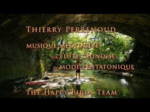 Envolée musicale en pleine nature
