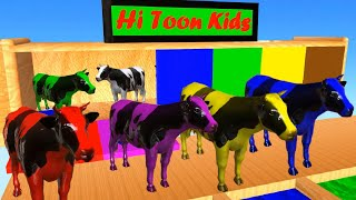 Farm Animals Swimming In Colors Water Slides ● Color Animals ● Learn Colors For Kids