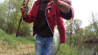РЫБАЛКА НА ПОПЛАВОК Разведка новых мест для рыбалки Ловля на реке на поплавок Рыбалка май 2020