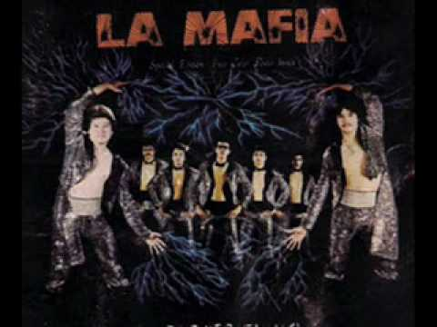 an introduction to the tejano music la mafia La mafia, from houston, tx, also adopted the synthesizer sound, played primarily cumbias, and made music videos and flashy stage shows to attract a wider audience.