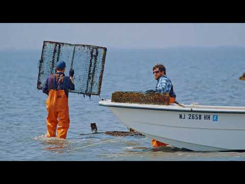 THE OYSTER FARMERS TRAILER
