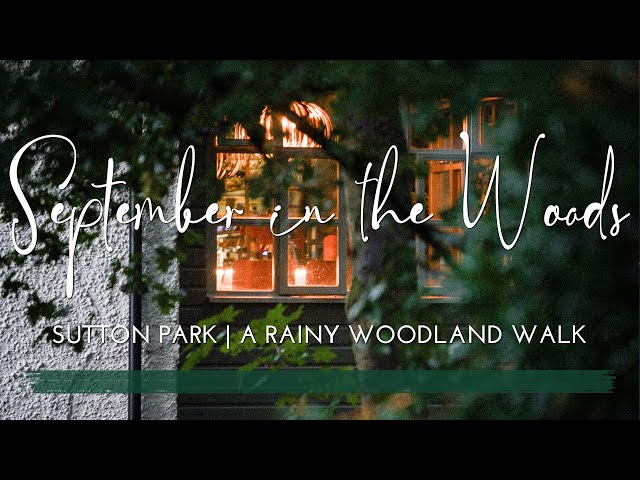 A Rainy Evening Walk in the Woods   Late Summer   Sutton Park   Mushrooms & Heather   Woodland Vlog