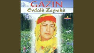Evdale Zeynıke