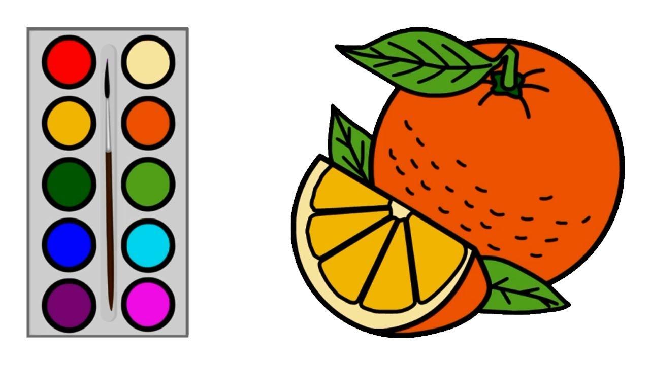 Cara Menggambar Buah Jeruk Menggambar Dan Mewarnai Buah Jeruk Untuk Anak Balita Paud Tk Sd Youtube