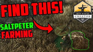 Farming Saltpeter in New World - Easy Way To Farm Gold in New World!