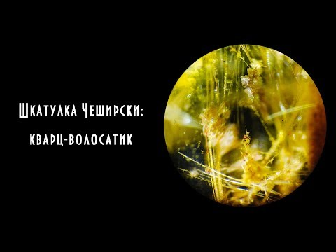Шкатулка Чеширски: кварц-волосатик