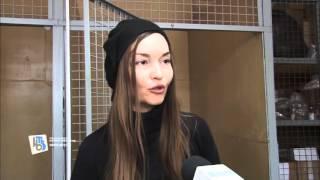 В Курске неизвестные взорвали петарду в пасти собаки