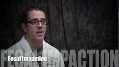 hqdefault - Back Pain And Bowel Impaction