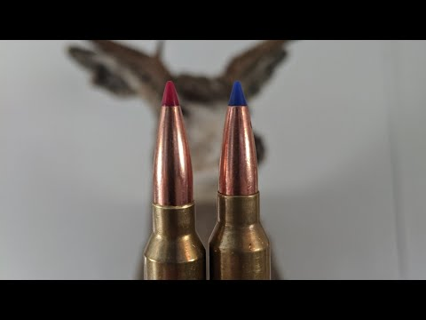 Hornady Vs Barnes Expansion Test