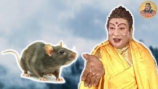 Vì sao chuột đứng đầu trong 12 Con giáp Truyền thuyết hay nhất | Triết lý cuộc sống