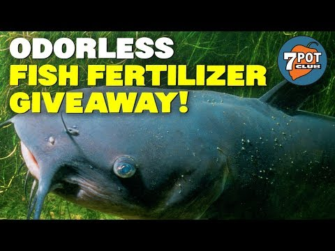 Fishnure Organic Fish Manure Compost Giveaway ** ENDED **