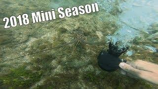 Mini Season Fort Pierce 2018 (Catch Clean Cook)