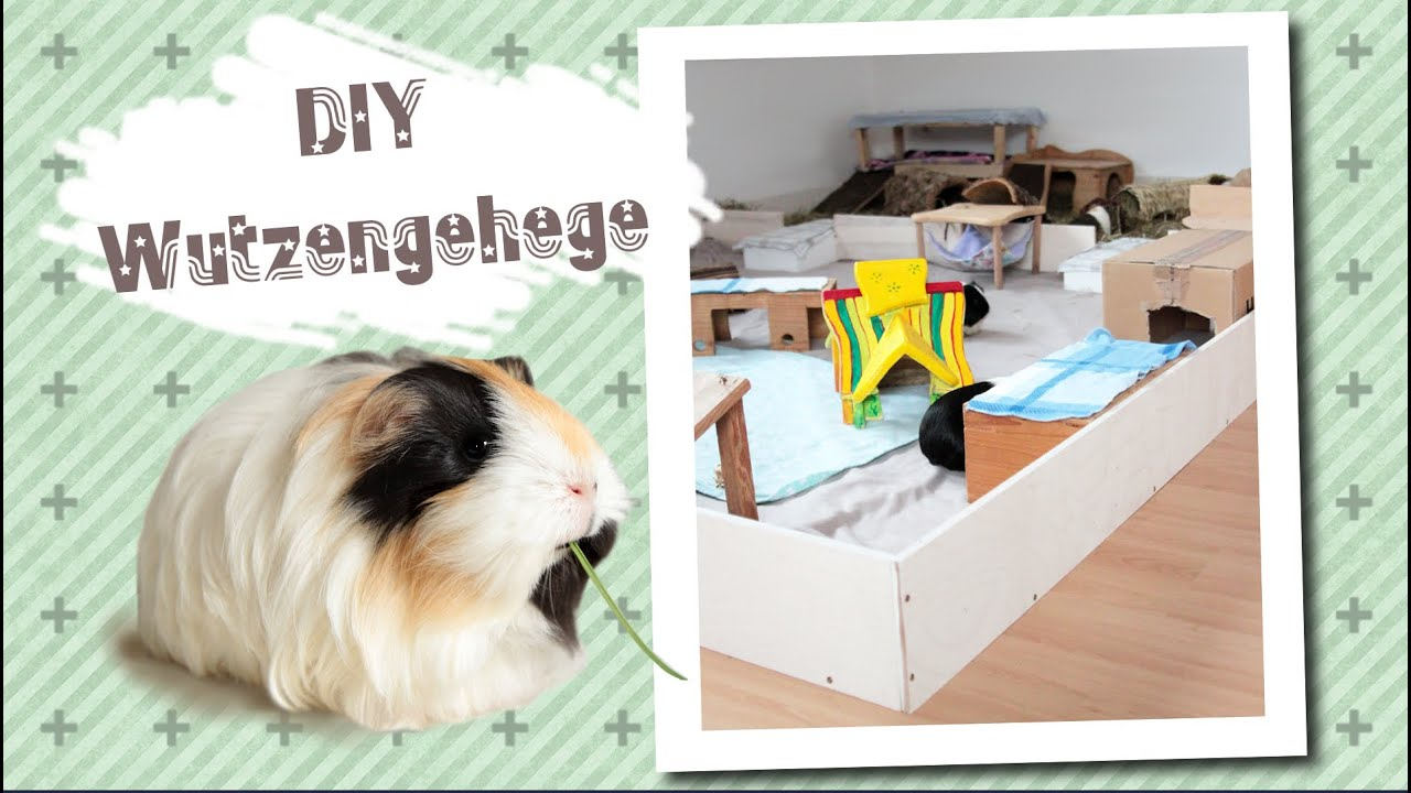 Meerschweinchen luxusgehege youtube for How to build a guinea pig cage out of wood
