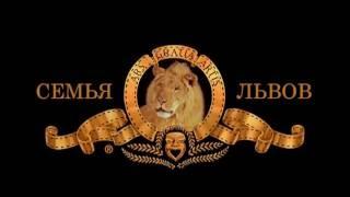 Фильм львов 2016