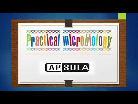 Practical microbiology (part1)