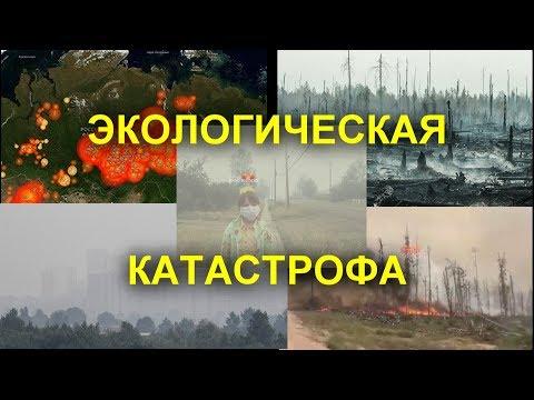 ШОК. Огнем охвачено 3 миллиона гектаров леса в Сибири, тушить бесполезно