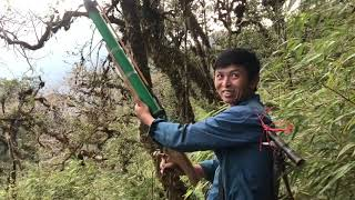 Thợ săn chim siêu đẳng