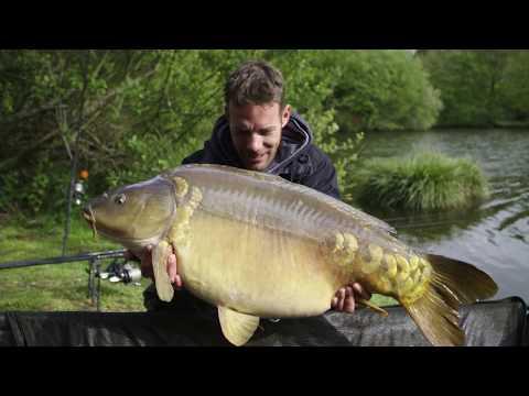 Joe Morgan Carp TV fishes Mayflower pool France