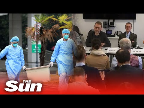 China coronavirus outbreak - London experts reveal all they know about Wuhan disease