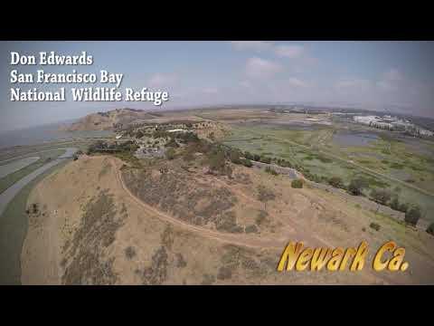 Don Edwads San Francisco Bay National Wildlife Refuge.  Newark Ca