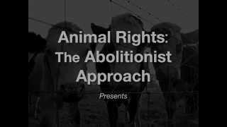 Animals as Property (EN)