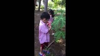 giờ học ngoại khóa của bé mầm non - bé chăm sóc cây cảnh