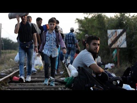 Ungheria, esodo di migranti al confine con la Serbia