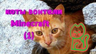 Коты воители minecraft (1)
