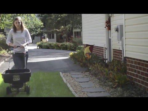 Healthy Virginia Lawns