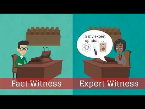 What is an expert witness?