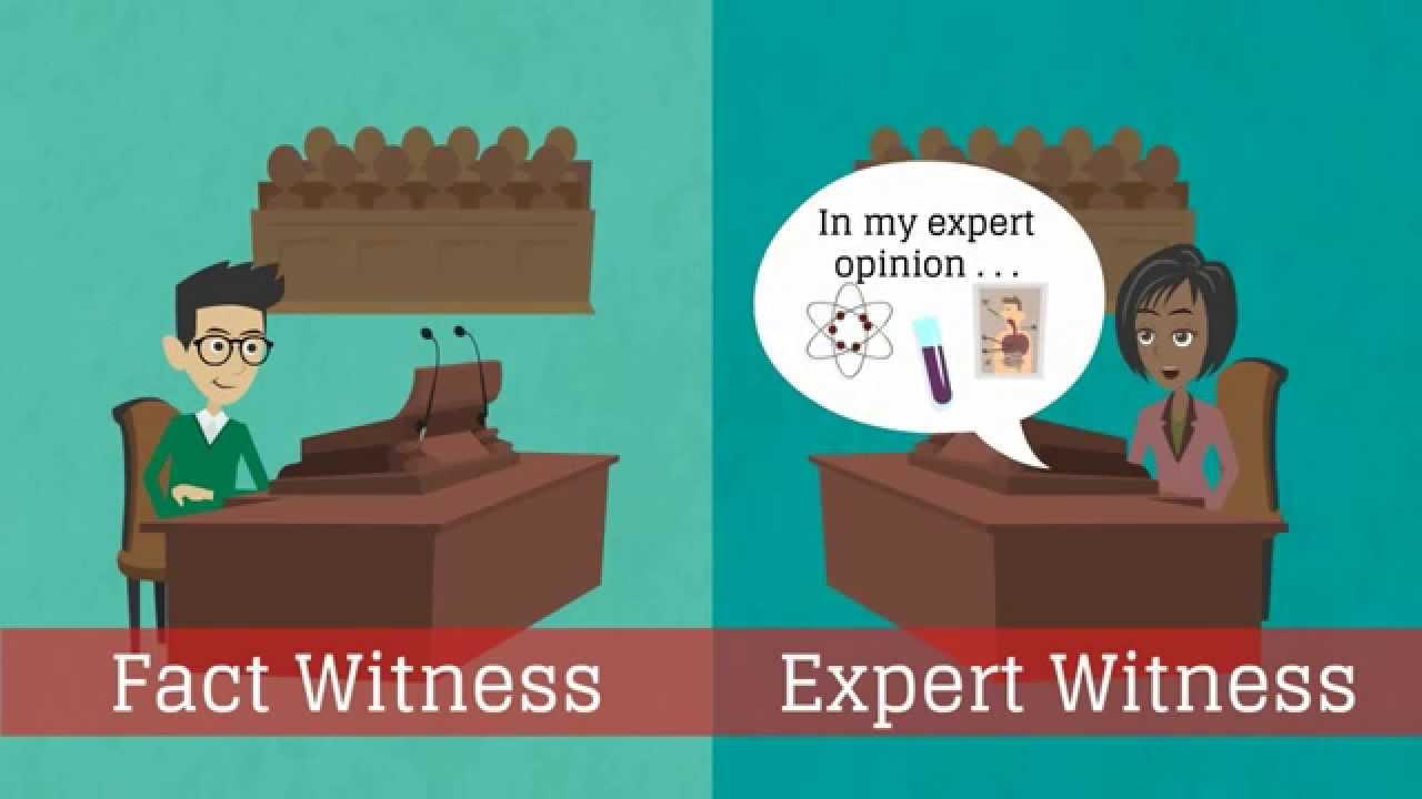 The Expert Witness