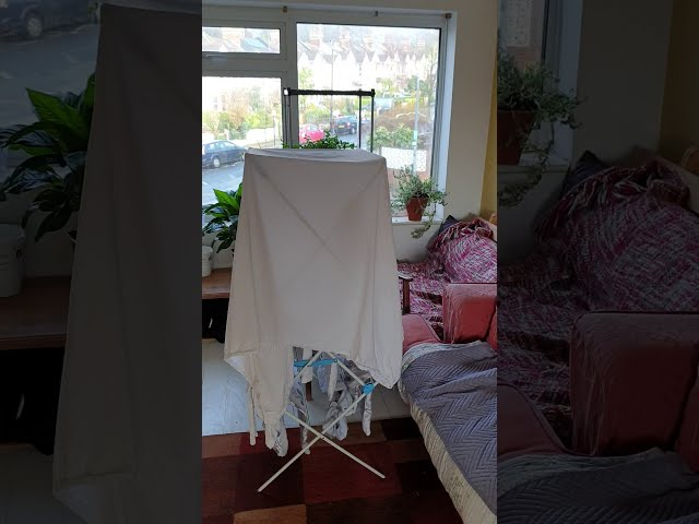 Room Available in Sunny Friendly Houseshare Main Photo
