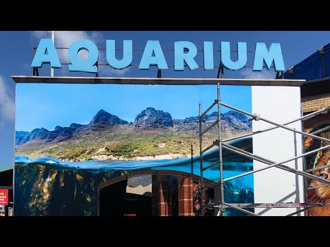 Two Oceans Aquarium entrance by Steve Benjamin