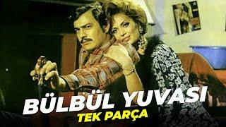 Bülbül Yuvası | Türkan Şoray Eski Türk Filmi Full İzle