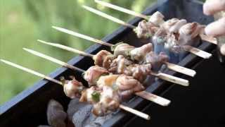 Yakitori Chicken 焼き鳥 Recipe / English Subtitles