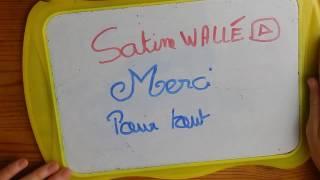 Draw My Life // Satine Walle