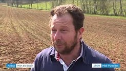 Plantation sapin bio en Ariège - par France Sapin Bio et chambre d'agriculture