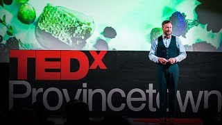 How you can help save the bees, one hive at a time   Noah Wilson-Rich