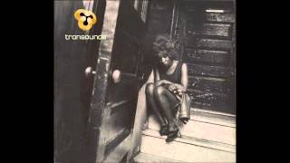 transounds - Last Days... Of Disco