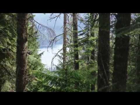 Coeur d'Alene Region - Four Great Hiking Trails