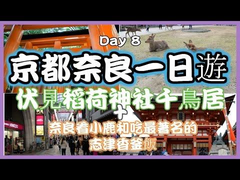 【京都奈良】 【大阪自由行】【日本自由行】 Day 8:京都奈良一日遊, 伏見稻荷神社的千本鳥居, 奈良看小鹿和吃最著名的志津香釜飯