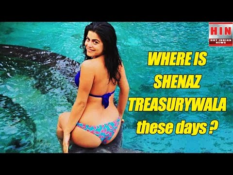 Where Is Shenaz Treasurywala. The Hot Actress Of Delhi Belly