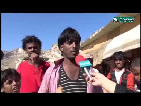 زراعة جوز الهند بفوائده العديدة في العيون بحضرموت