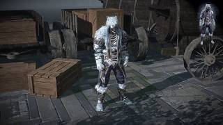 Path of Exile: Polar Armour Set