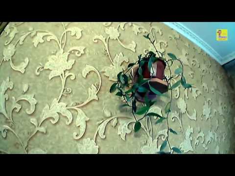 видео: Полки для цветов