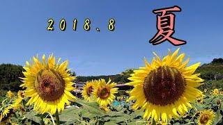 2018 夏 を感じる。 Summer landscape in Japan thumbnail