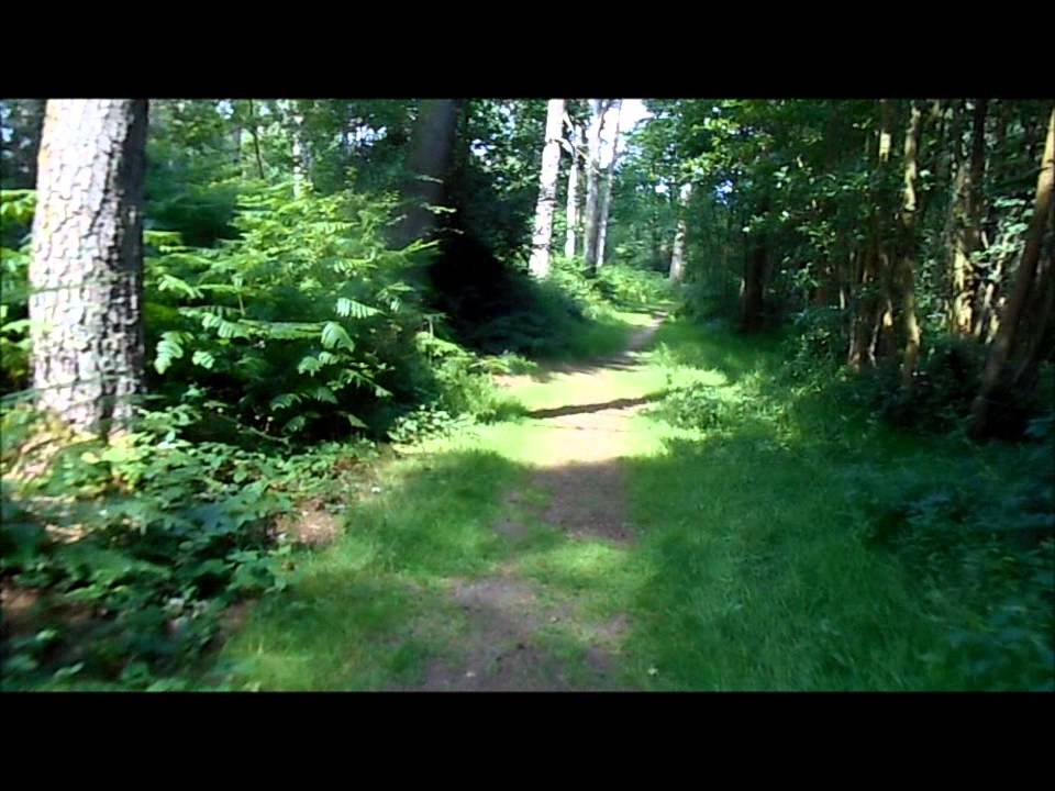 The Chase Nature Reserve Walking Route